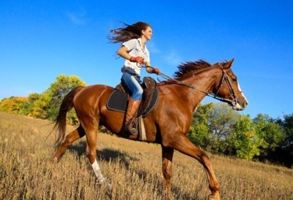 horse riding burn calories