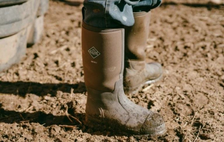 best barn boots reviews