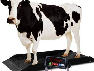 best livestock scale reviews