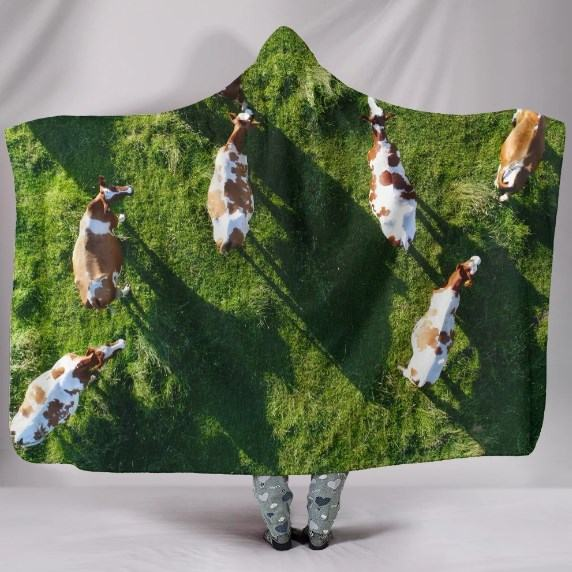 Cows in Field look from the Top Hooded Blanket