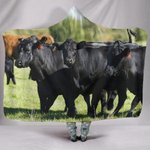 Herd of Black Angus Cow Hooded Blanket