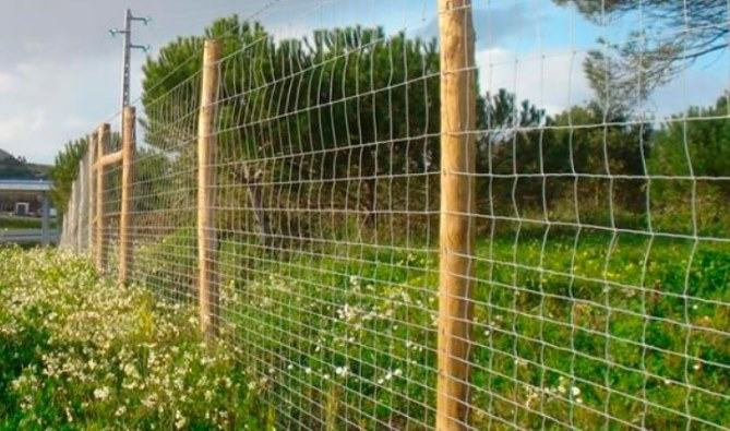 Square Wire Fencing