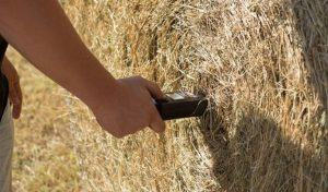 best hay moisture tester reviews