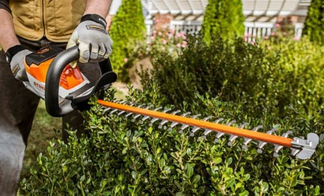 gas hedge trimmer for branches