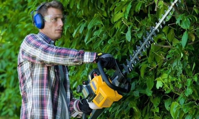 using gas hedge trimmer