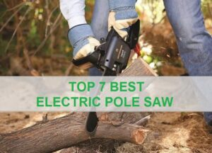 Best Electric Pole Saw Reviews