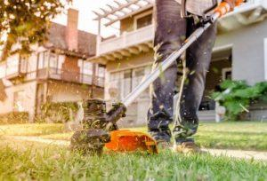 best weed eater for the money reviews